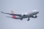 yabyanさんが、成田国際空港で撮影したイベリア航空 A330-202の航空フォト(飛行機 写真・画像)