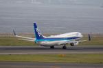 どりーむらいなーさんが、中部国際空港で撮影した全日空 737-881の航空フォト(写真)