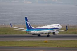 どりーむらいなーさんが、中部国際空港で撮影した全日空 737-881の航空フォト(飛行機 写真・画像)