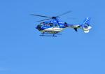 だだちゃ豆さんが、庄内空港で撮影した東北エアサービス EC135P2+の航空フォト(写真)