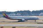 わいどあさんが、成田国際空港で撮影したアシアナ航空 A330-323Xの航空フォト(写真)