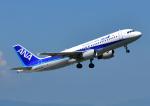 じーく。さんが、佐賀空港で撮影した全日空 A320-211の航空フォト(飛行機 写真・画像)