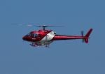 じーく。さんが、佐賀空港で撮影したエス・ジー・シー佐賀航空 AS350B Ecureuilの航空フォト(写真)