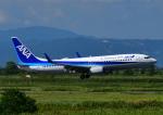 じーく。さんが、佐賀空港で撮影した全日空 737-881の航空フォト(飛行機 写真・画像)