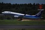 知希(仮)さんが、成田国際空港で撮影した全日空 737-881の航空フォト(写真)