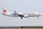 まえちんさんが、羽田空港で撮影した日本トランスオーシャン航空 737-8Q3の航空フォト(写真)