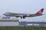 yabyanさんが、成田国際空港で撮影したカーゴルクス 747-8R7F/SCDの航空フォト(飛行機 写真・画像)