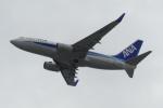 うすさんが、関西国際空港で撮影した全日空 737-781の航空フォト(写真)