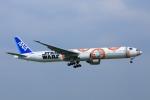 meron panさんが、成田国際空港で撮影した全日空 777-381/ERの航空フォト(写真)