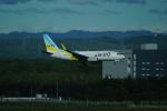 FRTさんが、新千歳空港で撮影したAIR DO 737-781の航空フォト(飛行機 写真・画像)