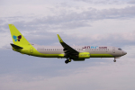 yabyanさんが、成田国際空港で撮影したジンエアー 737-8Q8の航空フォト(飛行機 写真・画像)