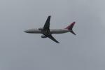 うすさんが、関西国際空港で撮影したイースター航空 737-86Nの航空フォト(写真)