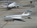 ランチパッドさんが、羽田空港で撮影したガルフストリーム・エアロスペース Gulfstream Aerospaceの航空フォト(写真)