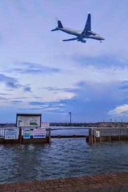 Dazhongさんが、羽田空港で撮影した日本航空 777-200の航空フォト(飛行機 写真・画像)