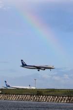 westtowerさんが、羽田空港で撮影した全日空 A320-211の航空フォト(写真)