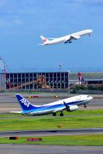 まいけるさんが、羽田空港で撮影した全日空 737-781の航空フォト(写真)