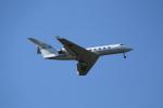 mogusaenさんが、成田国際空港で撮影した国土交通省 航空局 G-IV Gulfstream IV-SPの航空フォト(飛行機 写真・画像)