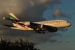 shootingstarさんが、成田国際空港で撮影したエミレーツ航空 A380-861の航空フォト(写真)