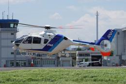 神宮寺ももさんが、東京ヘリポートで撮影したオールニッポンヘリコプター EC135T2の航空フォト(飛行機 写真・画像)
