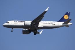 航空フォト:D-AIND ルフトハンザドイツ航空 A320neo