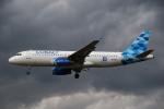 sky-spotterさんが、ロンドン・ヒースロー空港で撮影したコバルト・エア A320-232の航空フォト(写真)