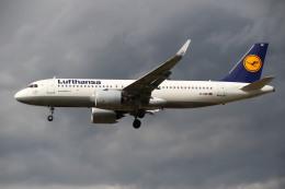 航空フォト:D-AINI ルフトハンザドイツ航空 A320neo