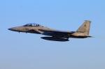 Tomo_mcz_lgmさんが、新田原基地で撮影した航空自衛隊 F-15DJ Eagleの航空フォト(写真)