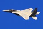 Tomo_mczさんが、新田原基地で撮影した航空自衛隊 F-15DJ Eagleの航空フォト(飛行機 写真・画像)