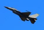 Tomo_mcz_lgmさんが、新田原基地で撮影したアメリカ空軍 F-16CM-50-CF Fighting Falconの航空フォト(写真)