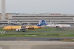 キイロイトリさんが、羽田空港で撮影した全日空 777-281/ERの航空フォト(写真)
