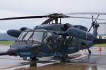 神宮寺ももさんが、南紀白浜空港で撮影した航空自衛隊 UH-60Jの航空フォト(写真)