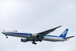 スカイチームKMJ なぁちゃんさんが、福岡空港で撮影した全日空 777-381の航空フォト(写真)