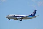 LEGACY-747さんが、那覇空港で撮影したANAウイングス 737-5L9の航空フォト(写真)
