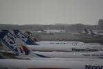 Dreamliner_NRT51さんが、成田国際空港で撮影したエーデルワイス航空の航空フォト(写真)