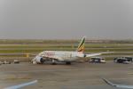 jjieさんが、上海浦東国際空港で撮影したエチオピア航空 787-8 Dreamlinerの航空フォト(写真)