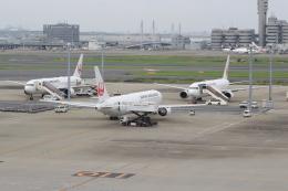 キイロイトリさんが、羽田空港で撮影した日本航空 767-346/ERの航空フォト(写真)