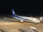 STAR ALLIANCE☆JA712Aさんが、長崎空港で撮影した全日空 737-881の航空フォト(写真)