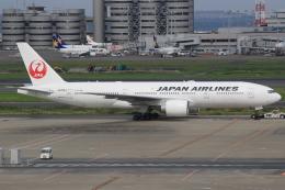 キイロイトリさんが、羽田空港で撮影した日本航空 777-246/ERの航空フォト(写真)