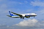 beimax55さんが、成田国際空港で撮影した全日空 787-8 Dreamlinerの航空フォト(写真)
