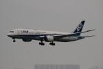 uhfxさんが、香港国際空港で撮影した全日空 787-9の航空フォト(飛行機 写真・画像)