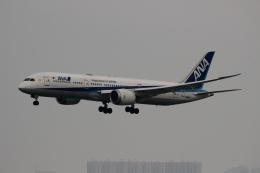 uhfxさんが、香港国際空港で撮影した全日空 787-9の航空フォト(写真)