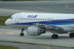 fukucyanさんが、羽田空港で撮影した全日空 A320-211の航空フォト(写真)