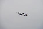 レドームさんが、羽田空港で撮影したスカイマーク 737-86Nの航空フォト(写真)
