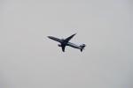 レドームさんが、羽田空港で撮影した全日空 A321-211の航空フォト(写真)
