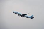 レドームさんが、羽田空港で撮影した大韓航空 777-3B5の航空フォト(写真)
