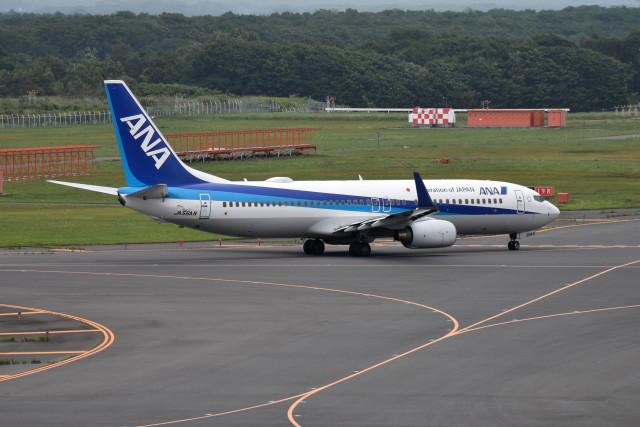 turenoアカクロさんが、新千歳空港で撮影した全日空 737-881の航空フォト(飛行機 写真・画像)