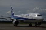 gomachanさんが、大館能代空港で撮影した全日空 A320-211の航空フォト(写真)