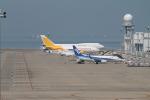 RAOUさんが、中部国際空港で撮影した全日空 737-781の航空フォト(写真)