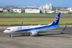 日向雪兎さんが、宮崎空港で撮影した全日空 737-8ALの航空フォト(写真)