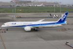 キイロイトリさんが、羽田空港で撮影した全日空 787-9の航空フォト(写真)